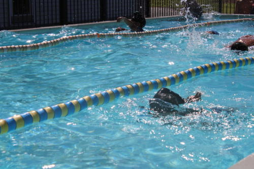 Swimming Sports - Middle School